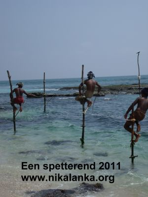 spetterend2011