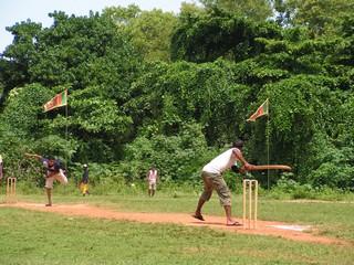 cricketspelen